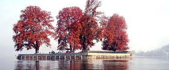 Kashmir Tour With Leh Package